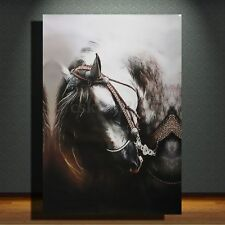 Modern Abstract Horse Portrait Huge Hand Painted Oil Painting Canvas (No Frame)
