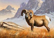 "Goldmilky  cross stitch kit ""Big Horn Sheep in Mountains"" 22x 16 inch (a30)"