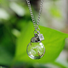 Crystal Ball Real Dandelion Seed Wishing Wish Necklace Long Silver Trendy Chain