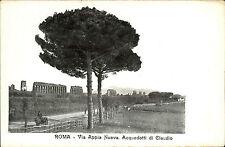 Rom Roma Italia vecchia AK con albero ~ 1900 Via Appia Nuova acquedotti la Claudio