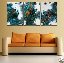 Beautiful Peacock   HD printed on canvas wall decor artoil painting No frame