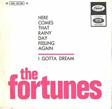 FORTUNES--PORTUGAL PICTURE SLEEV + 45--(HERE COMES THAT RAINY DAY FEELING AGAIN)