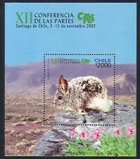 Chile 2002 Animals/Nature/Chinchilla/CITES/Conservation/Mountains 1v m/s n33367