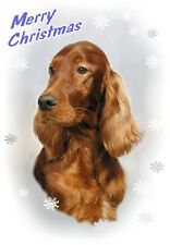 Irish Setter Dog A6 Christmas Card Design XIRSET-6 by paws2print