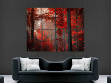 AUTUMN FOREST RED LEAVES BEAUTIFUL   WALL POSTER ART PICTURE PRINT LARGE