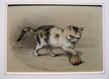 SARAH GOLDEN ALBUM ANIMALS CAT PLAYING WITH A BALL W/COL C1840