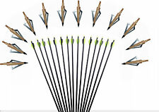 "12X Archery Screw-In 31""Fiberglass Arrows Nocks Hunting&Target Practice Arrow"