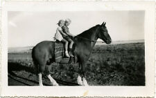 GIRL AND BOY, SISTER AND BROTHER SITTING ON HORSE & VINTAGE SNAPSHOT PHOTO