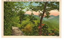 Vintage Linen Postcard - Path to Hickory Nut Falls, Chimney Rock Mountain, N.C.