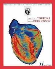Principles Of Anatomy And Physiology Tortora Derrickson SAVE  W/ 11TH EDITION