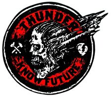 Thunder Trucks - Know Future Skateboard Sticker skate snow surf board bmx guitar