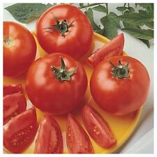 Early Girl Hybrid Organic Seeds 10+ The classic sauce and paste tomato