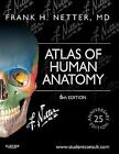 4DAYS DELIVERY - Atlas of Human Anatomy, 6th Int'l ed. By NETTER (FULL COLOR)