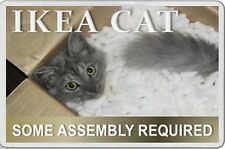 Cat Lover Fun Novelty FRIDGE MAGNET IKEA CAT in box ASSEMBLY NEEDED unusual gift