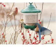 Songbird Essentials CLINGERS ONLY FEEDER (Green), FREE SHIPPING