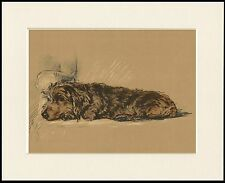 DACHSHUND WIRE HAIRED CHARMING DOG PRINT MOUNTED READY TO FRAME