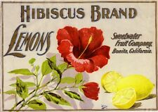 Bonita San Diego County Hibiscus Flowers Lemon Citrus Fruit Crate Label Print