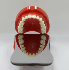 Dentist Dental Intraoral Orthodontic Photographic Mirror 1sided Rhodium Occlusa