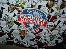 "WOW Detroit Red Wings AHL Team Grand Rapids Griffins 22""x33"" 2013 Playoff Poster"