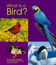 What Is a Bird? (The Animal Kingdom) by Schaefer, Lola M.