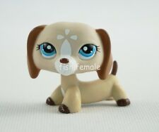 Littlest Pet Shop LPS #1491Tan Cream White Dachshund Dog Blue Eyes Girl Toys