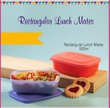 Tupperware Rectangular Lunch Box/Mates-1Pc (Cap: 500ml)