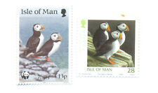 Puffins-Birds-Isle of Man (2)mnh-Seabirds