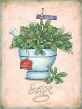 Sage Fines Herbes Jardin Nourriture & Boisson Cuisine Boutique De Café Moyen