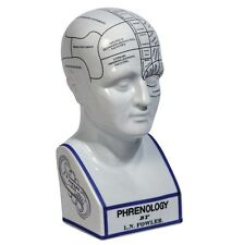 Authentic Models PHRENOLOGY HEAD MG020 Desktop Accessory
