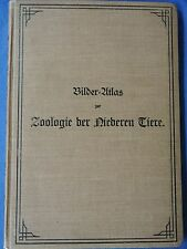 Prof.Dr. William Marshall : Bilder-Atlas zur Zoologie der Niederen Tiere (1899