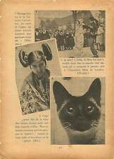 Mariage Bretons La Garenne-Colombes/ Chat Siamois/Indian Acoma 1936 ILLUSTRATION