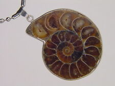 BUTW- Silver Ammonite nautiloid fossil  50 mm pendant necklace jewelry 6179K