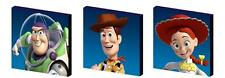 Toy story-buzz, woody, jessie toile art blocs/wall art plaques/photos