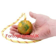 Soft Rubber Dog Ball on Rope for Fun Puppy Games | Ball on Rope Dog Toy UK 2.4""