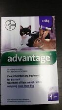 Advantage Purple For Cats Over 9 Lbs 4pk Free Ship