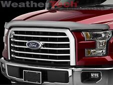 WeatherTech Stone & Bug Deflector Hood Shield for Ford F-150 - 2015-2016