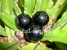 FENG SHUI - 25MM TO 27MM BLACK ONYX CRYSTAL BALL (PROTECTION & SELF CONTROL)
