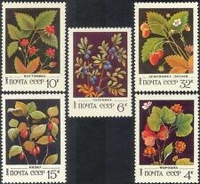 Russia 1982 Cherry/Strawberry/Wild Berries/Flowers/Fruit/Nature 5v set (n17989)