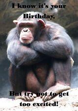 Monkey Animaux Imprimé Personnalisé cartes d'anniversaire Chimpanzé Chimpanzé Drôle Blague
