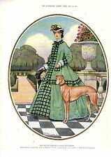 1914 Greyhound and Fashions - Elliman's ad from Illustrated London News
