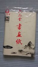 100pcs, 67X34cm, Chinese Xuan Rice Pith Plain Paper Painting Writing Calligraphy