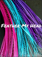 50 Whiting Feather Hair Extension, Grizzly And Solid Mix Medium Length 7 to 9 In