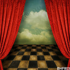 10'x10' Stage Computer-painted Vinyl Scenic Photo Background Backdrop BHF803