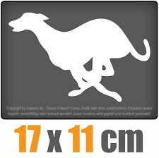 Windhund 17 x 10 cm JDM Decal Sticker Aufkleber Racing Die Cut