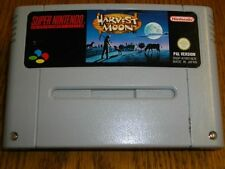 Harvest Moon für Super Nintendo SNES