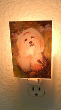 Best Friends by Ruth Maystead NIGHT LIGHT- Lhasa Apso dog-acrylic