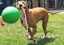 """TUGG-O Dog Toy Water Weighted Tug-O-War Large 10"""" Green Ball w/ 4' Rope Durable"""