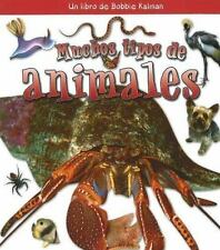 Muchos Tipos de Animales  Many Kinds of Animals (Que Tipo De Animal Es?  What Ki