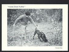 CHAZAL / LADORNAC (24) CHIEN Chercheurs de Truffes au travail en 1991
