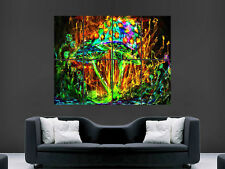 TRIPPY MUSHROOMS PYCHEDELIC IMAGE   LARGE  WALL PICTURE POSTER  GIANT HUGE ART